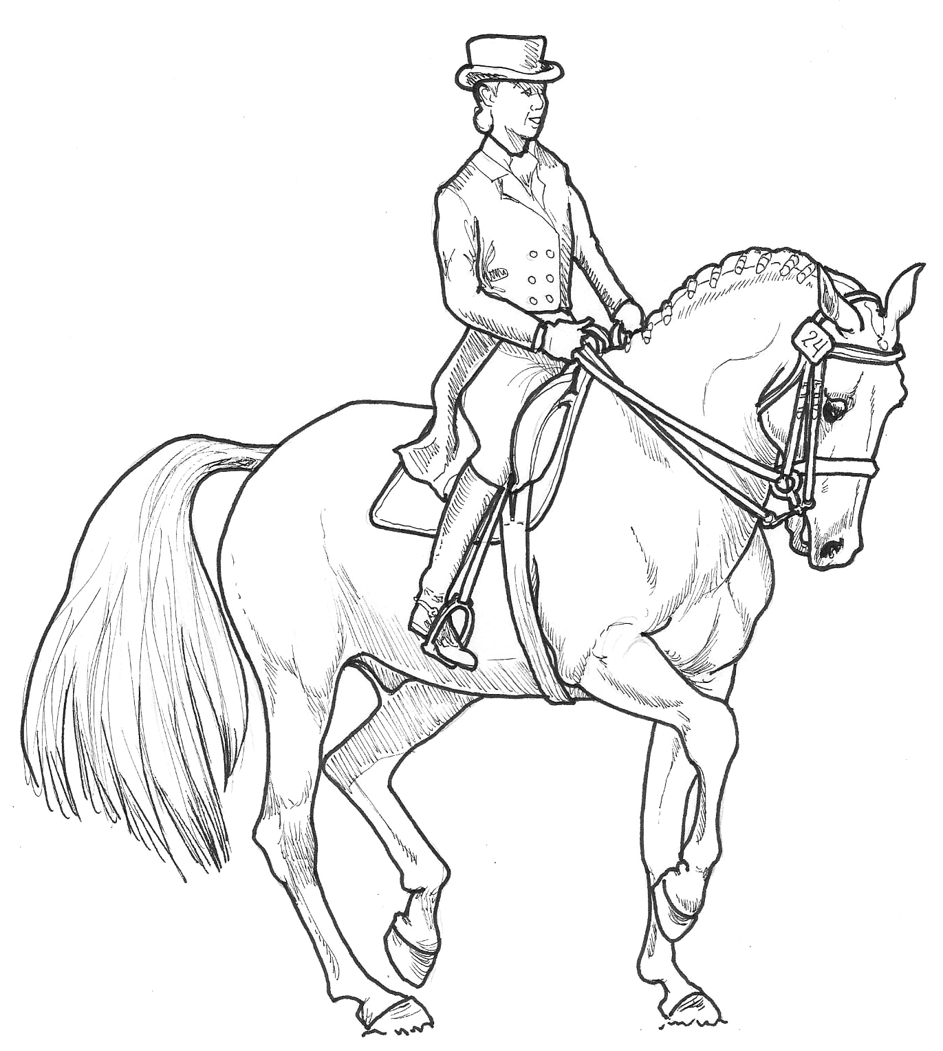 horse jumping coloring page10 images of horse coloring